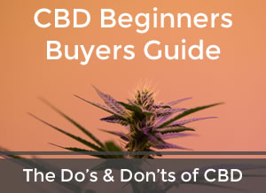 Beginners CBD Buying Guide
