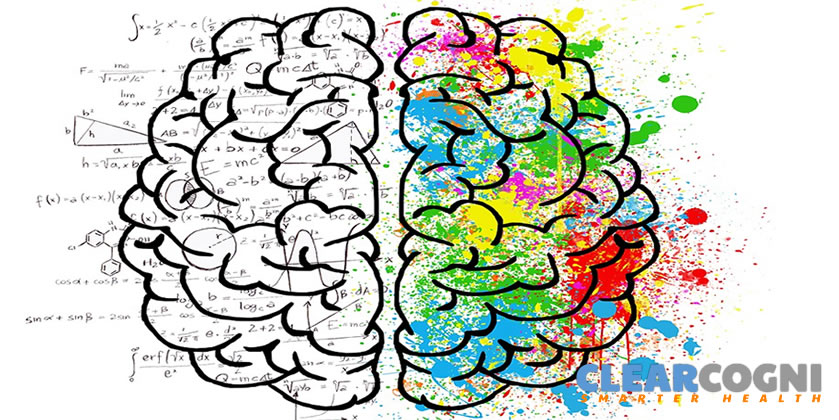 cognitive-effects-adderall-vs-modafinil
