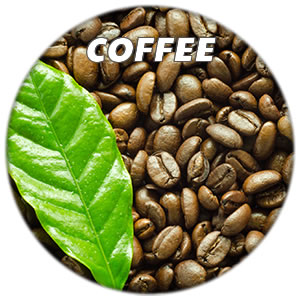 caffeine coffee Nootropics List